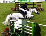 dublin_horse_show_2009_