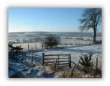 Winter in West Lothian