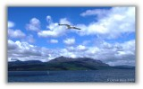 Flying to Arran