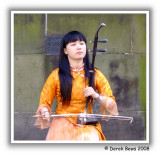 Erhu Musician