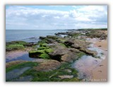 Kingsbarns Coastline