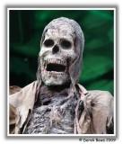 Edinburgh Skeleton