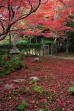 Enri-An at Kyoto