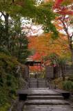 Adashino Nonbutsu-Ji Temple