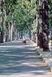 CambodiaSR002.jpg