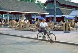 CambodiaSR005.jpg