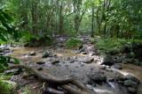 c4189 Trail crosses the stream