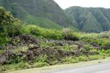 C0481 Hawaiian Heiau