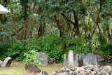 C0487 Old graveyard