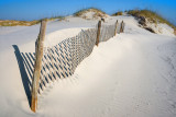 Dune and Fence II