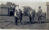 Pearle, Bill, Nibby, work horse, Francis (Dad)