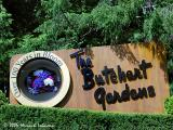 the_butchart_gardens