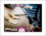 gesucht (searched)