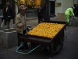 Oranges vendor