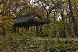 Hidden house - Changdeok