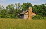 Abner Hollow Cabin Summer