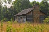 Abner Hollow Cabin Summer Morning