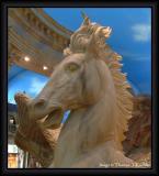 Horse at Caesars.JPG