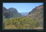 Cave Creek Canyon, Cathedral Vista