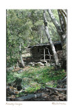 Ramsey Canyon Cabin