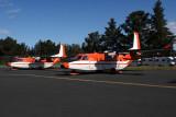SKYTRADERS CASA C212S HBA RF IMG_9101.jpg