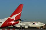 QANTAS JAL AIRCRAFT  SYDIMG_4371.jpg