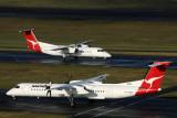 QANTAS LINK AIRCRAFT SYD RF IMG_7998.jpg