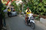 Street at Koh Tao