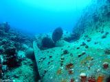 The wreck of the Cedar Pride