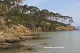 Porquerolles Island (2008)