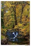 Waterfall at Sills Mill