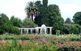 Rosedal Garden