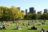 spring_in__new_york