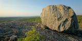 DSC03990 - Black Mountain Boulder II