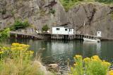 DSC04761 - Quidi Vidi Fishing Property