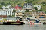 DSC08623 - Petty Harbour