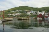 DSC08633 - Petty Harbour