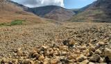 DSC09083 - Tablelands Valley