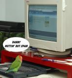 Bogey@Birdiemail.com