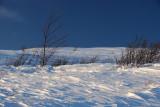 Snowscape 004