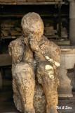 citizen of Pompeii