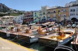 Capri boat harbor