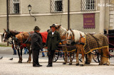 carriage drivers