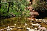 north fork, Oak  Creek - Sedona, Arizona