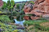 pond near Kanab, Utah