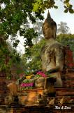 Offerings  - Wat Maha That