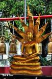 Buddha with 7 headed naga