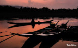 pre-dawn boats on the Mekong river