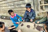 children playing  rock paper scissors
