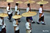 gold umbrellas in a row